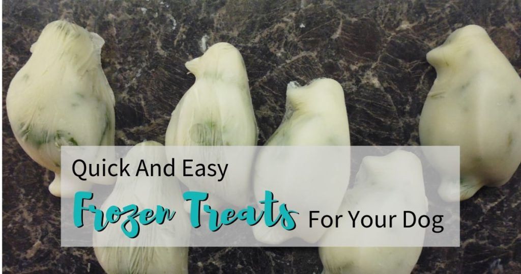 Photo of Yoghurt Penguins, one of the recipes in Quick And Easy Frozen Treats For Your Dog