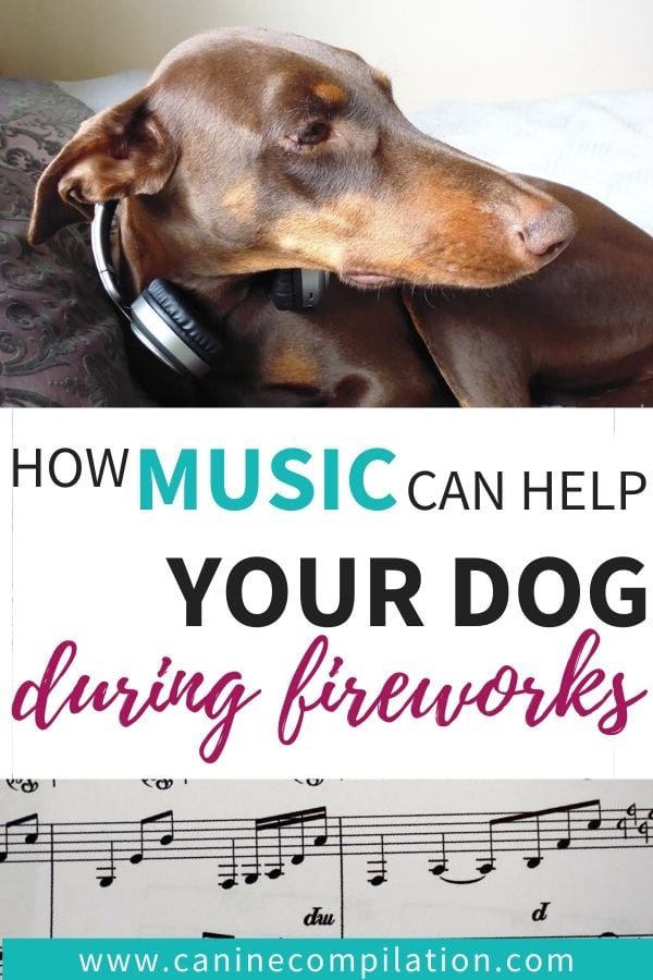 how music can calm your dog during fireworks