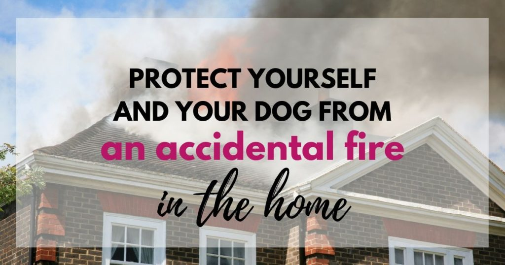 Protect yourself and your dog from an accidental fire in the home