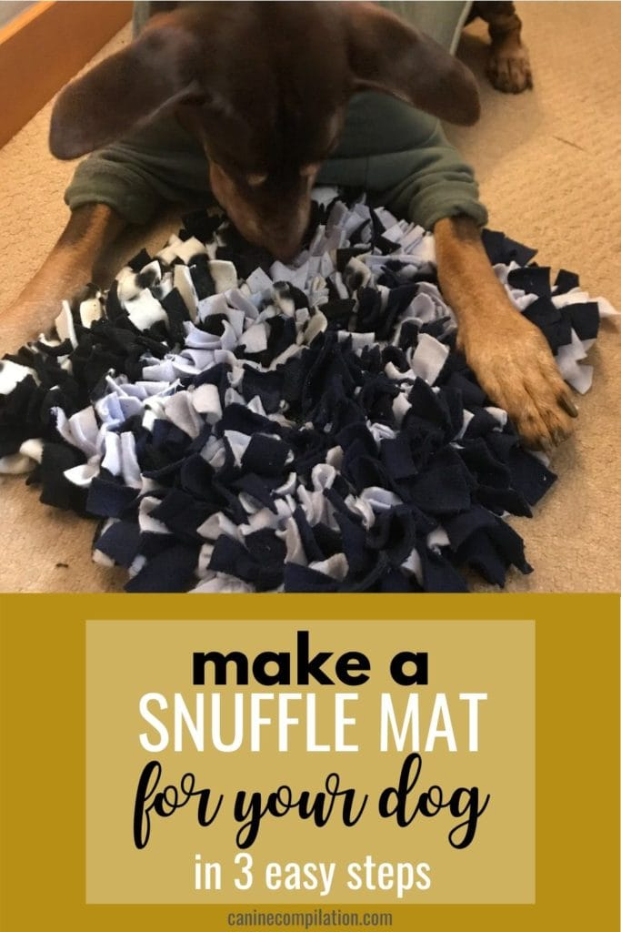 Make a snuffle mat for your dog in just 3 easy steps