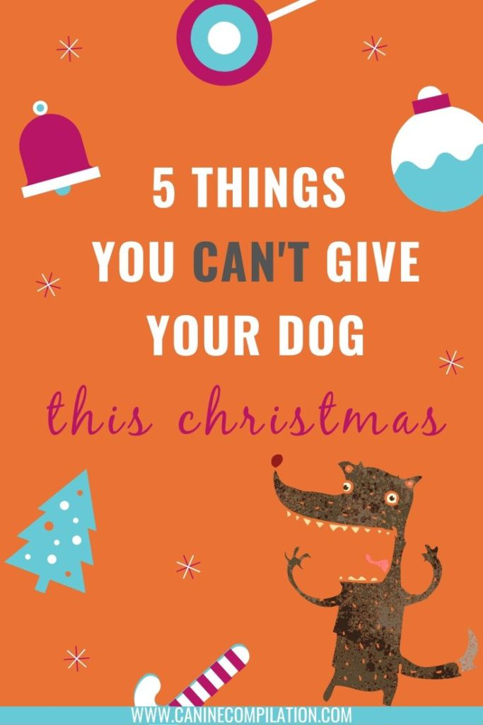 5 THINGS YOU CAN'T GIVE YOUR DOG THIS CHRISTMAS.