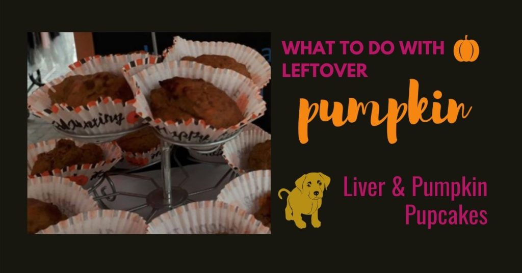 What to do with leftover Pumpkin - pumpkin and liver pupcakes recipe