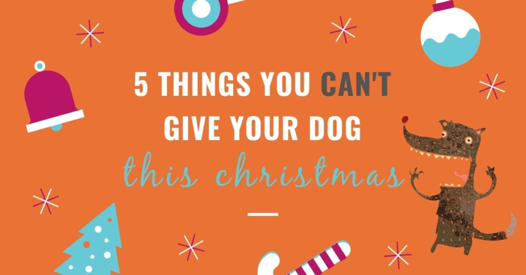 5 THINGS YOU CAN'T GIVE YOUR DOG THIS CHRISTMAS