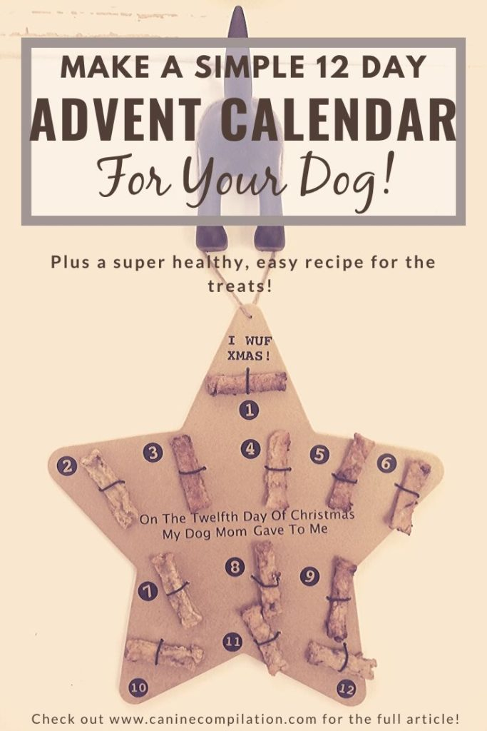 How to make a DIY 12 day advent calendar for dogs