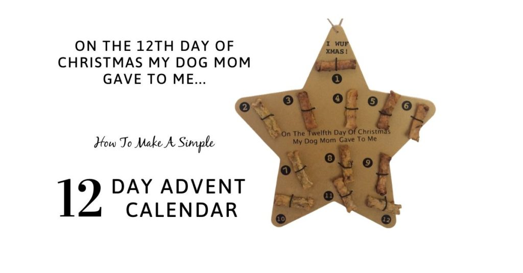 Make a simple 12 day advent calendar for your dog