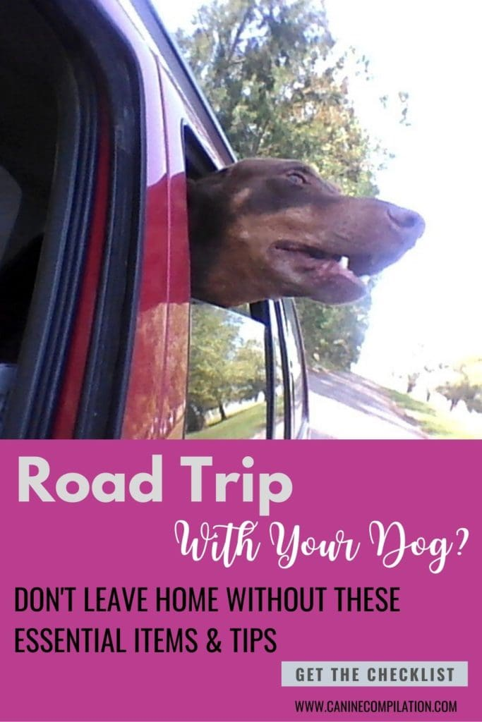 IMage of dog and text: Road trip with your dog? Don't leave without these essential items