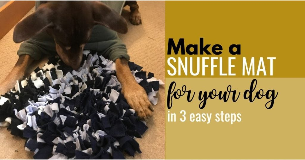 How To Make A Snuffle Mat For Your Dog