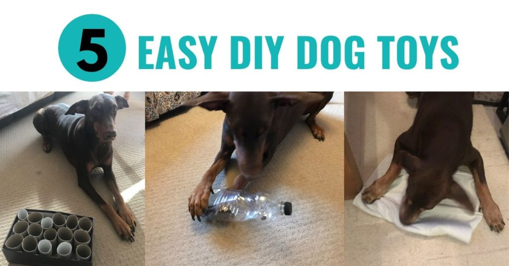 5 EASY DIY DOG TOYS YOU CAN MAKE FROM JUNK