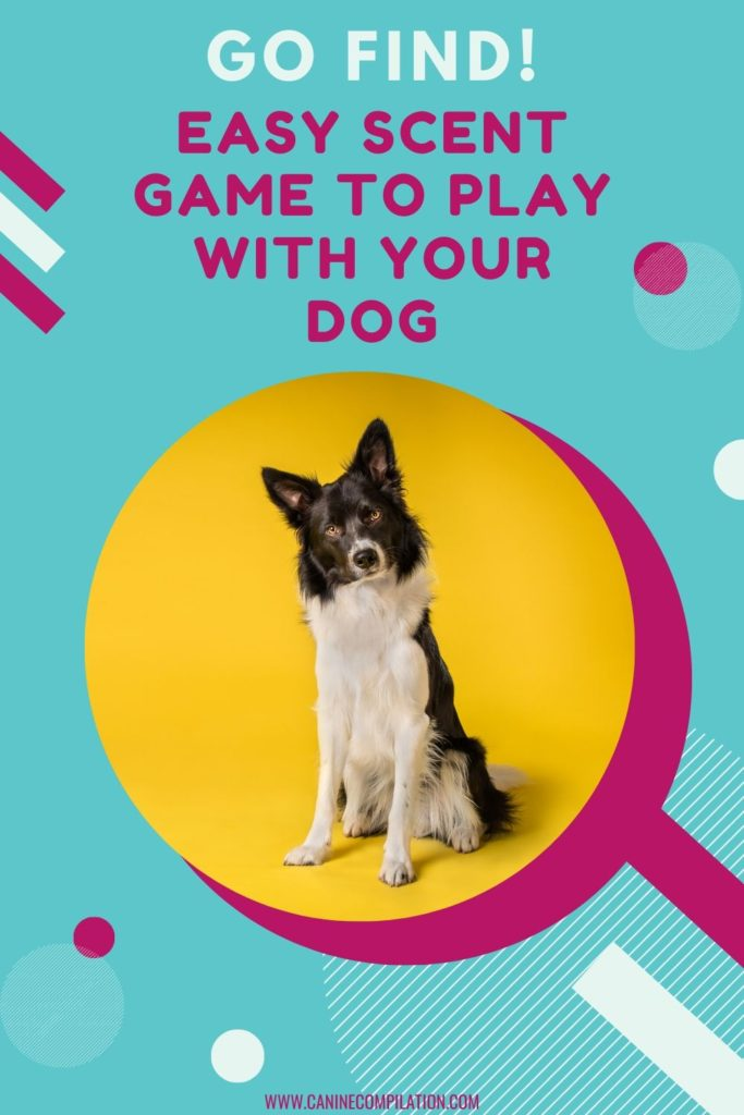 GO FIND easy scent game for dogs and image of a dog