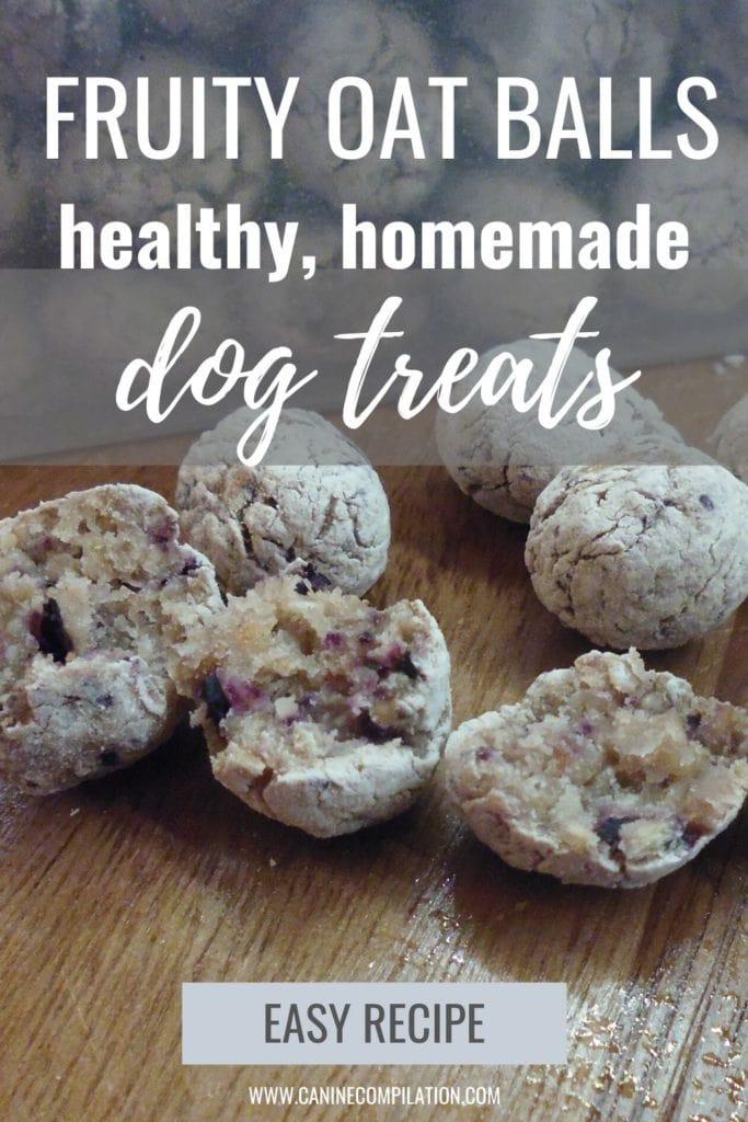 Fruity oat balls healthy homemade dog treats easy recipe