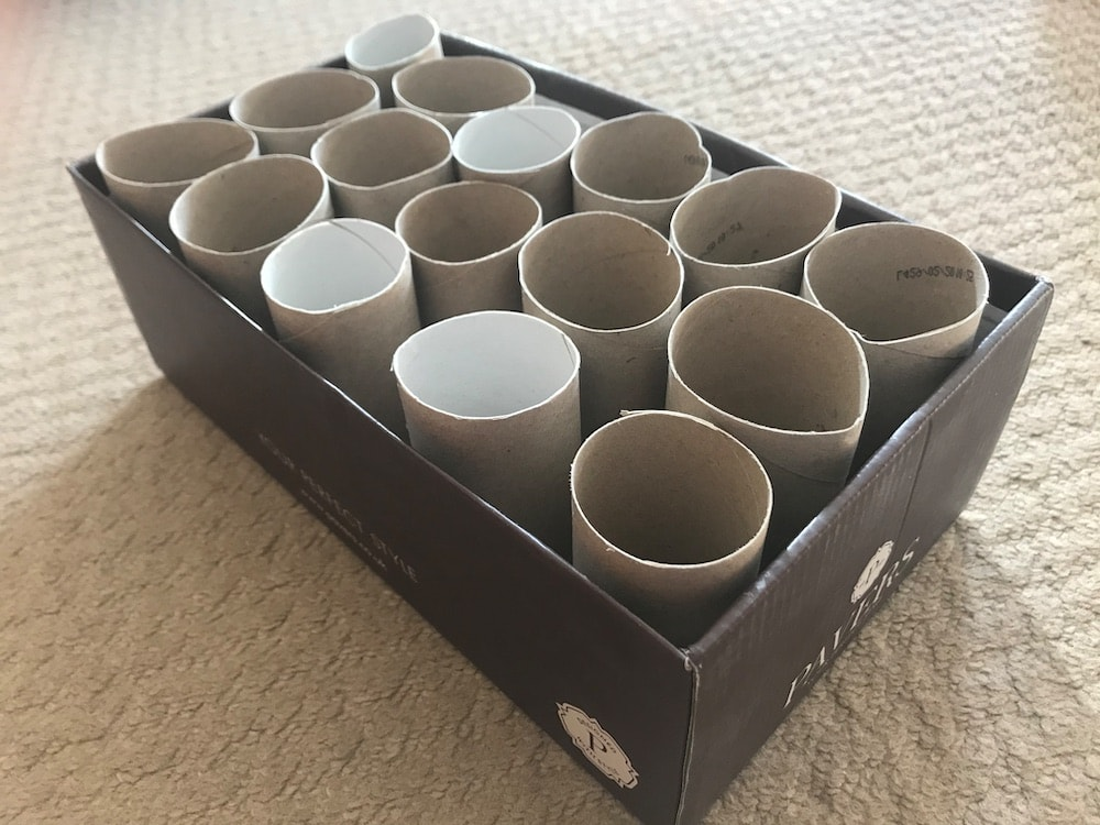 make a cheap dog toy out of recycled stuff in your home - a box of loo roll tubes