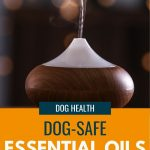 picture of an oil diffuser with text - Dog-safe Essential oils for your diffuser