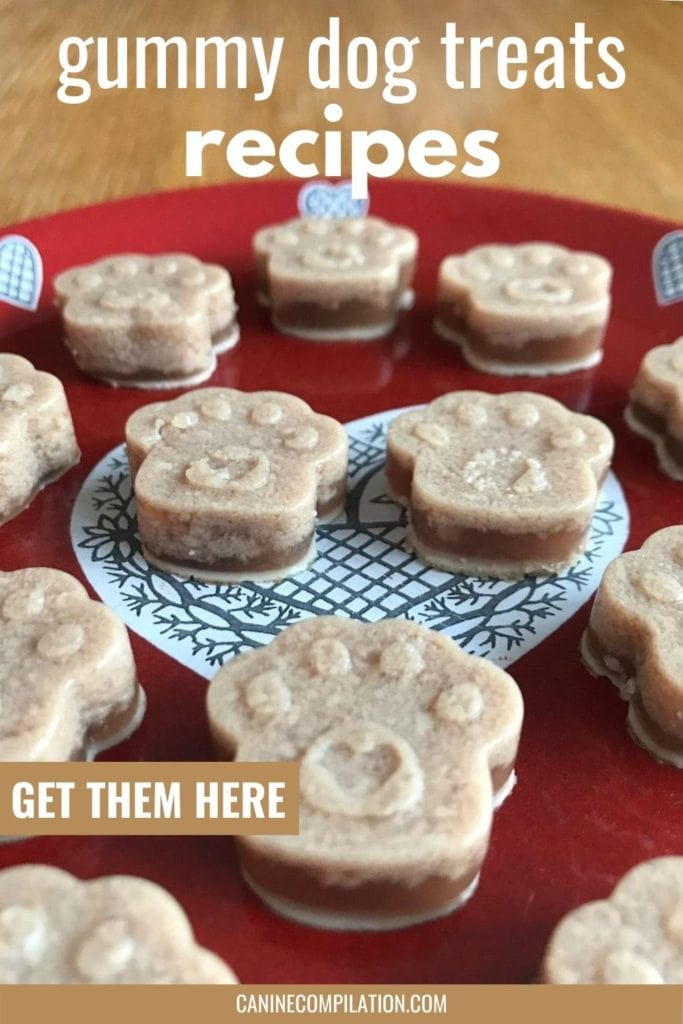 get gummy dog treats recipes - gummy dog treats in paw shape