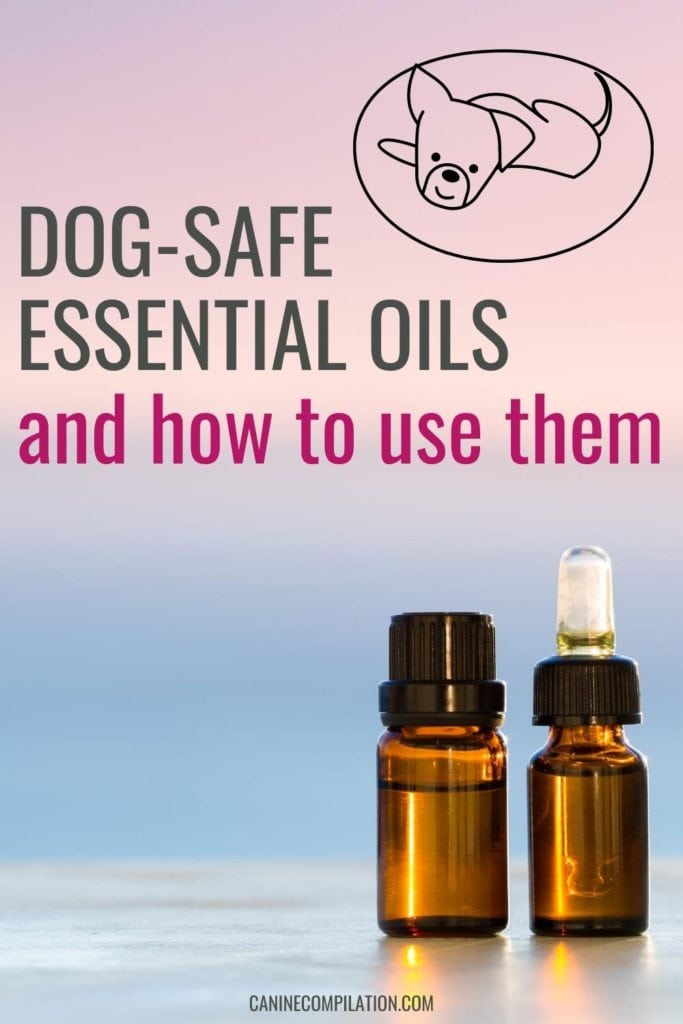 Dog-safe essential oils and how to use them