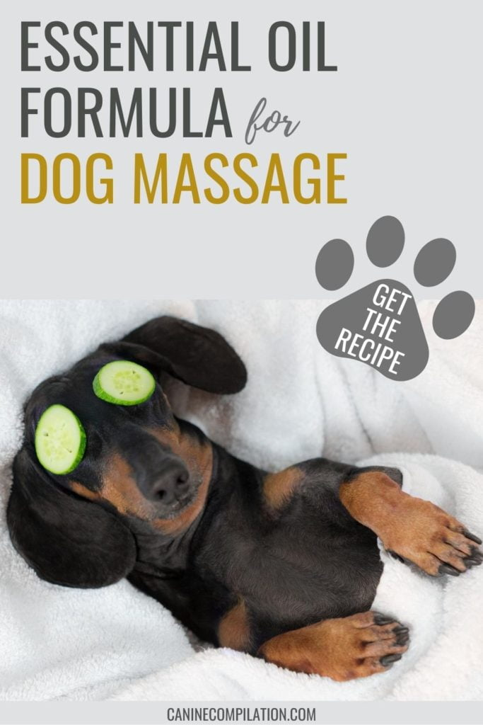 Essential oil formula for dog massage, get the recipe