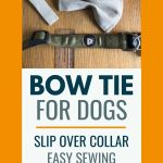 Photo of a ruler, dog collar and bow tie with text - bow tie for dogs easy DIY project
