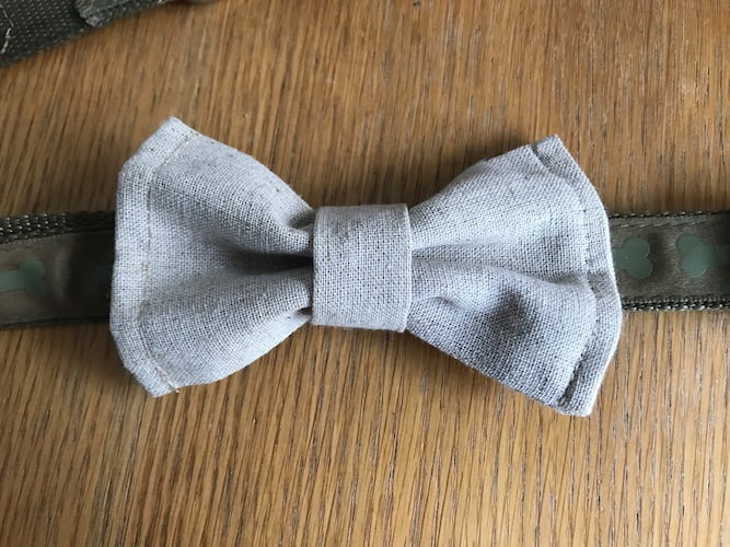 finished dog bow tie