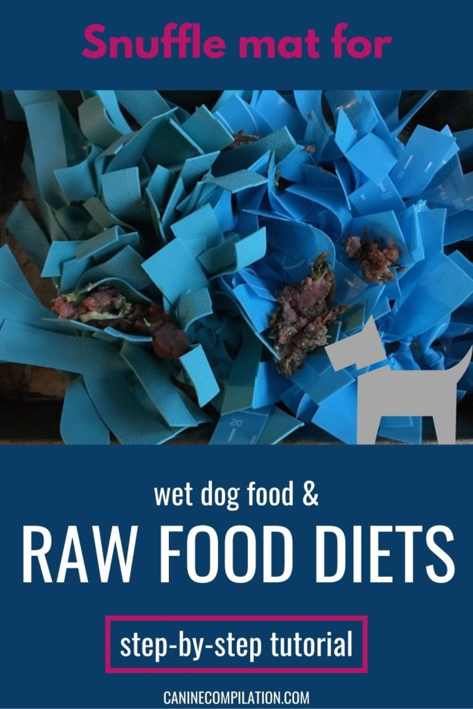 Snuffle mat for raw food diets
