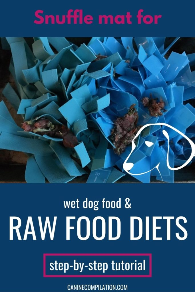 Snuffle mat for wet and raw food diets