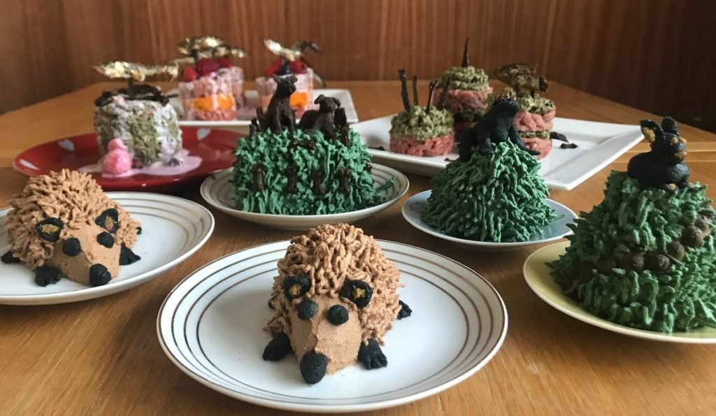 13 BIRTHDAY CAKES FOR DOGS