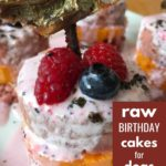 raw birthday cakes for dogs - recipes