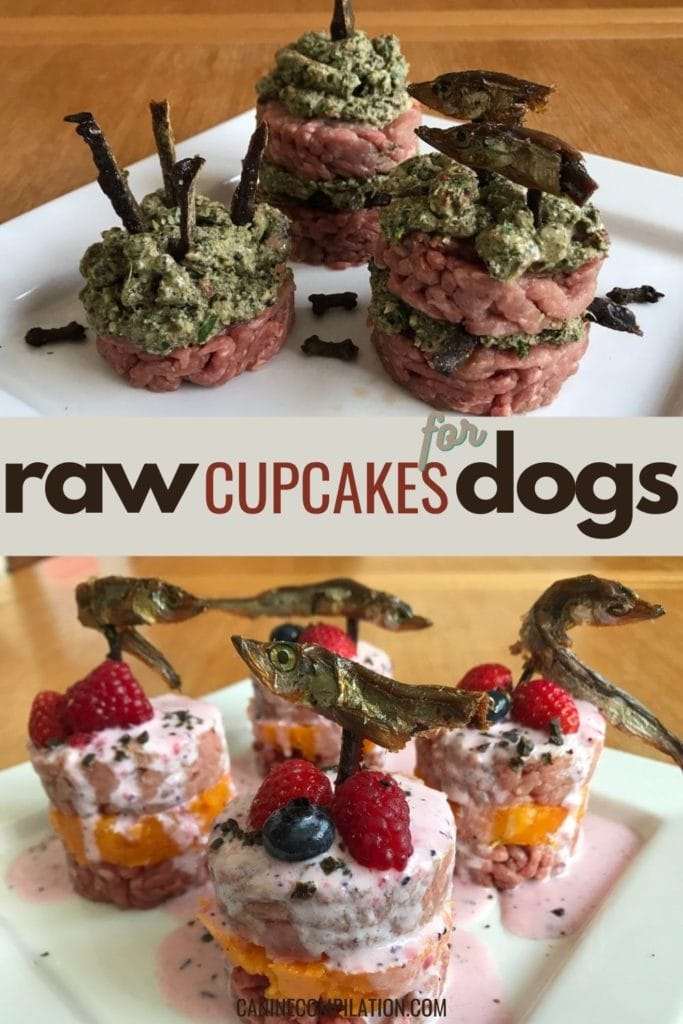 raw cupcakes for dogs