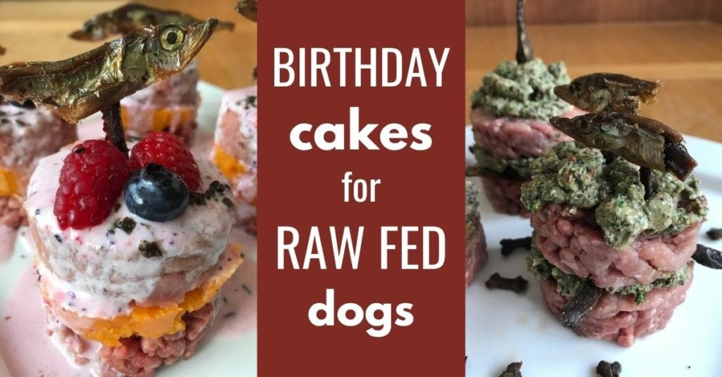 birthday cakes for raw fed dogs