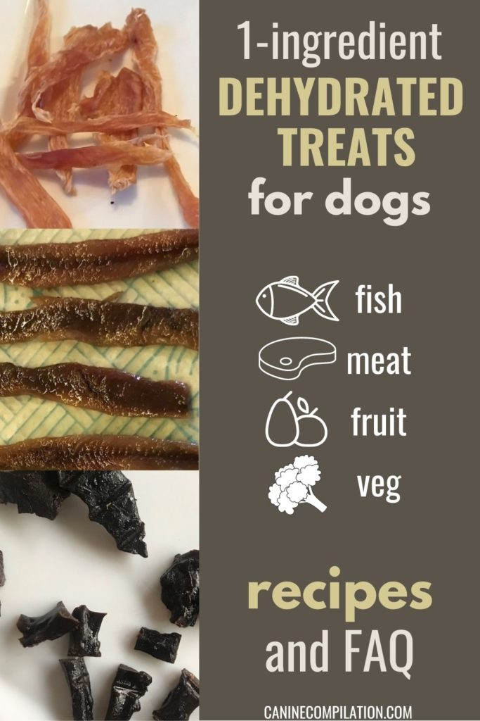 1-ingredient dehydrated treats for dogs - fish, meat, fruit, veg - recipes and FAQ