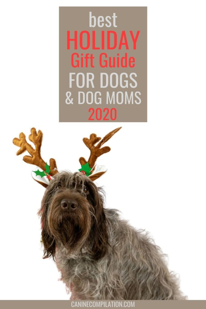 A dog with antler ears and text Best gift guide for dogs and dog moms 2020