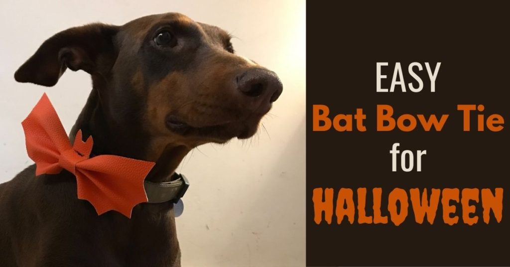 Easy Dog Bat Bow Tie for Halloween