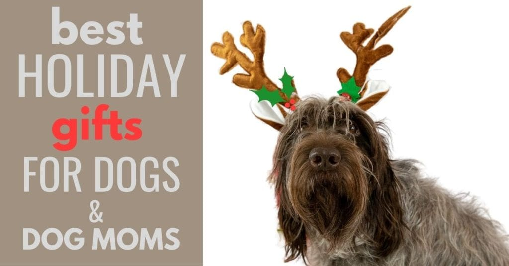 BEST HOLIDAY GIFTS FOR DOGS AND DOG MOMS and image of a dog with antler ears