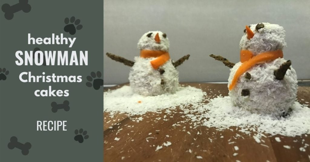 Image of snowman cakes and text -Healthy snowman Christmas cakes for dogs - tutorial