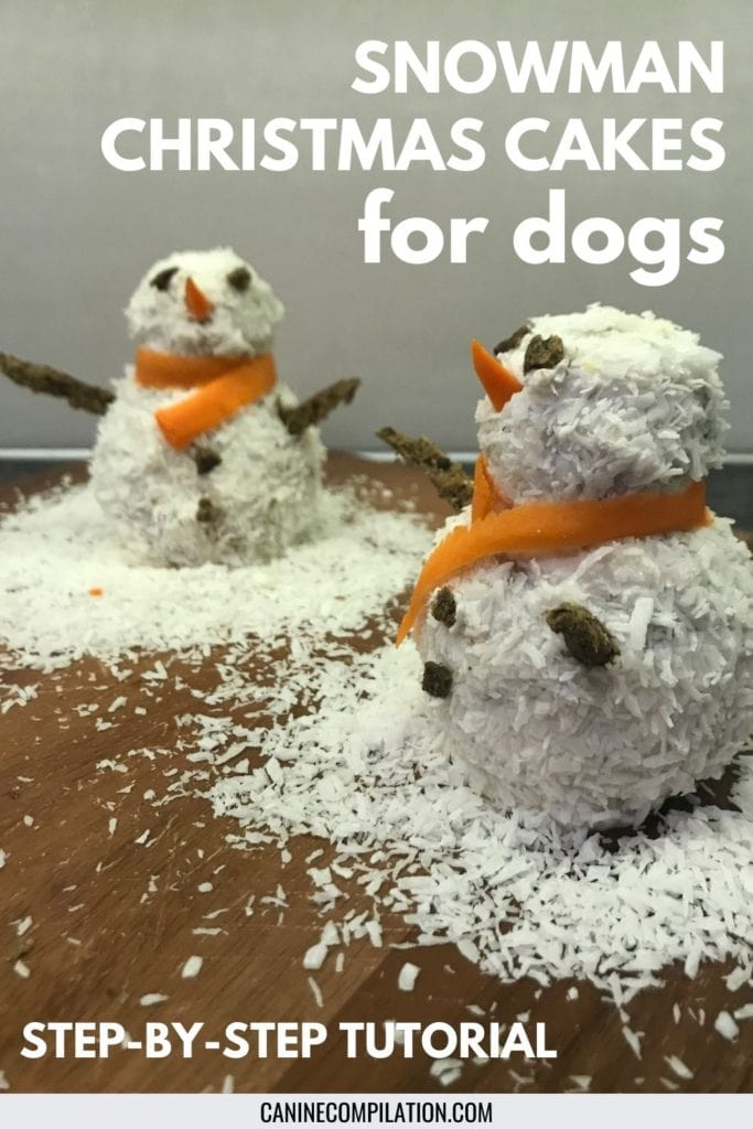 picture of 2 small snowman cakes for dogs
