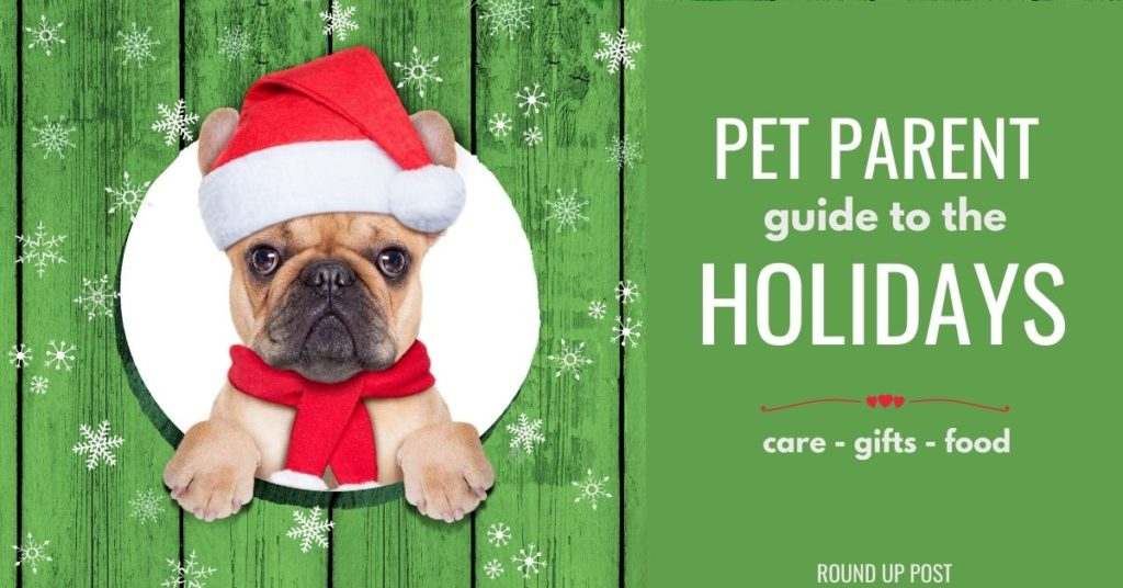 IMAGE OF DOG WITH TEXT - PET PARENT GUIDE TO THE HOLIDAYS