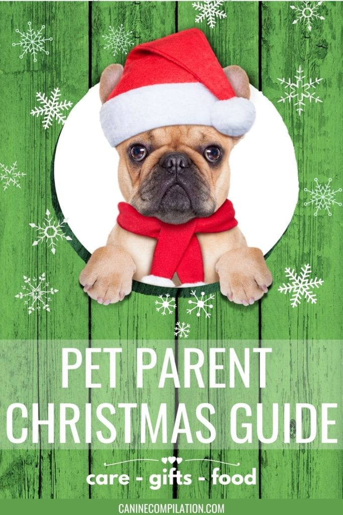 image of dog with text - Pet Parent Christmas Guide