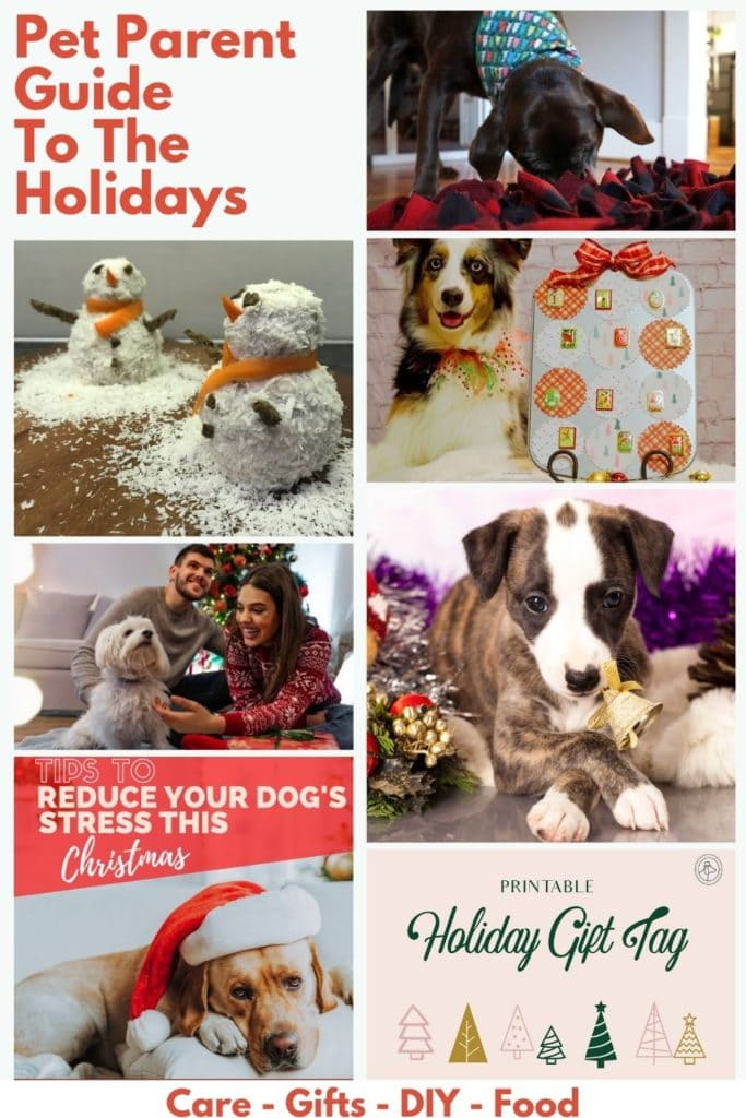 images of dogs with text - Pet Parent Christmas Guide
