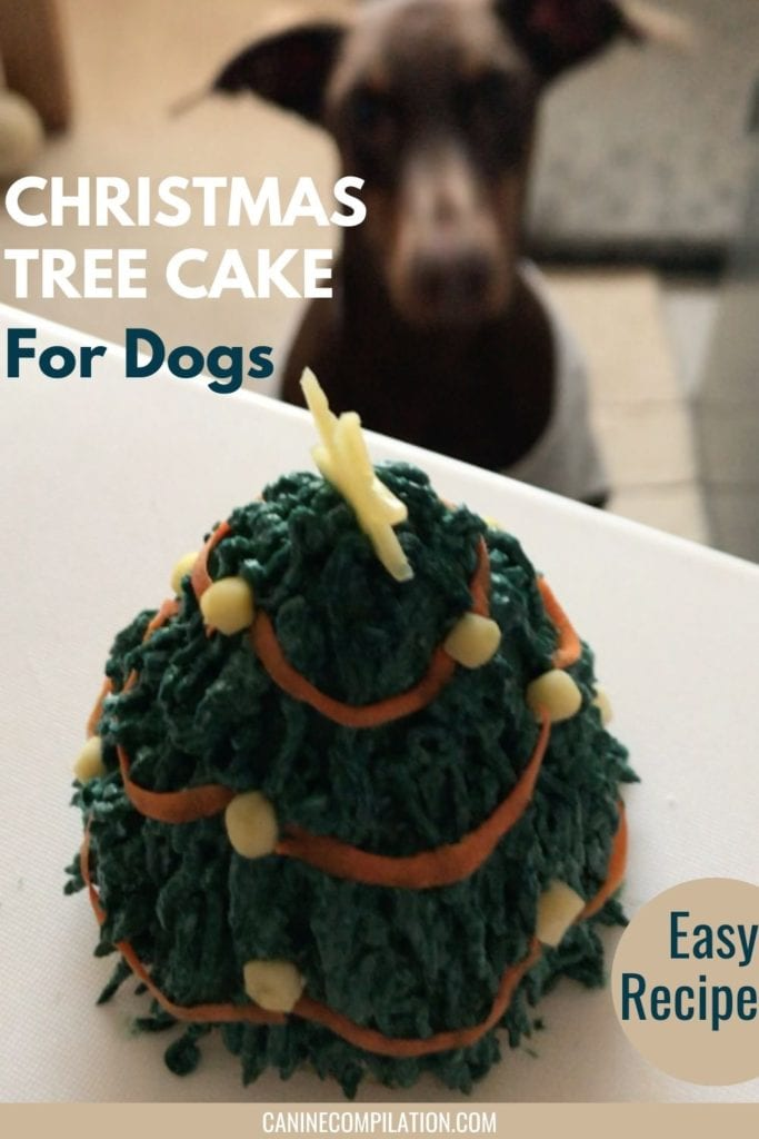 Image of a dog about to eat a Christmas tree cake for dogs, with text overlay Christmas tree cake for dogs - easy recipe