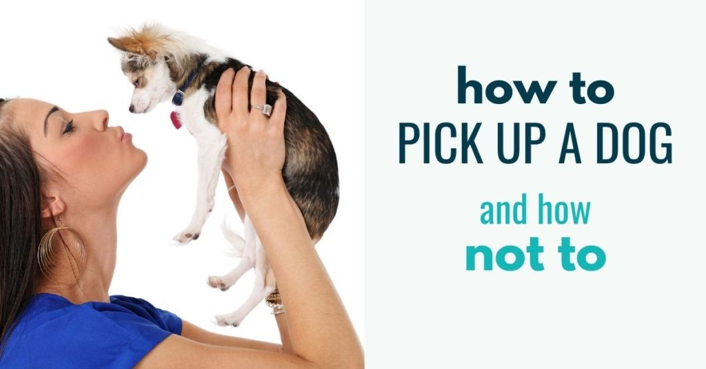 woman holding a dog and text how to pick up a dog and how not to