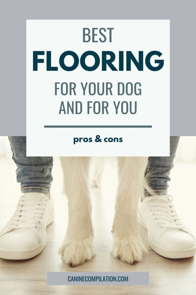 Image of a man's and a dog's legs with text Best home flooring for your dog - and you!