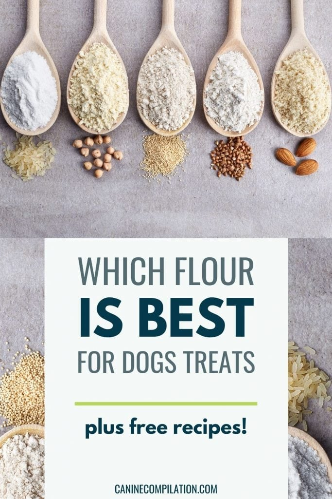 Image of different types of flour in wooden spoons, plus text Which flour is best for dog treats