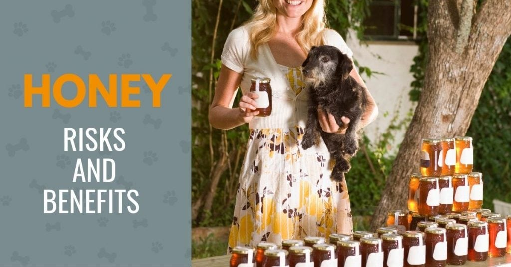 picture of a woman holding a dog and a honey jar, with text - risks and benefits of honey for dogs
