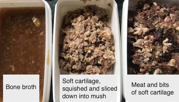 bone broth, soft cartilage and meat