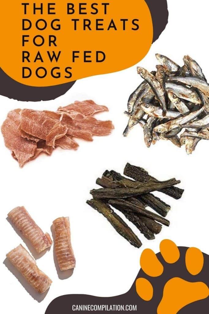 raw dog treats