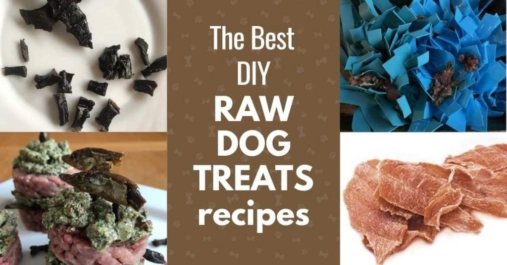 best homemade raw treats for dogs