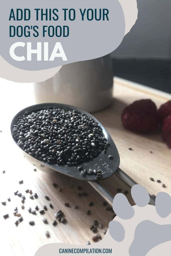 chia seeds in a dog treat recipe