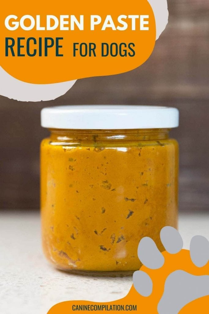 GOLDEN PASTE FOR DOGS Recipe and benefits
