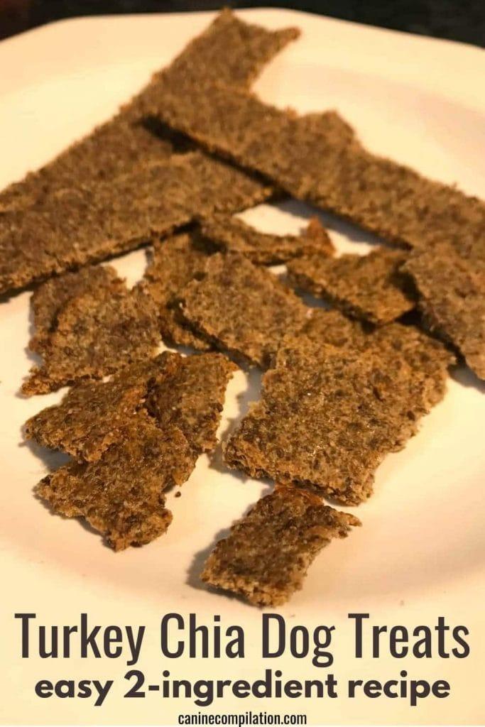 turkey and chia seeds dog treat recipe