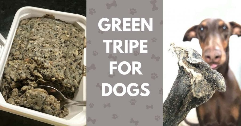 green tripe mince and dried tripe for dogs