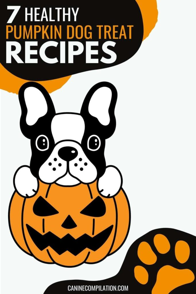 a picture of a dog in a pumpkin